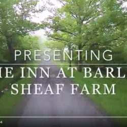 Barley Sheaf Video
